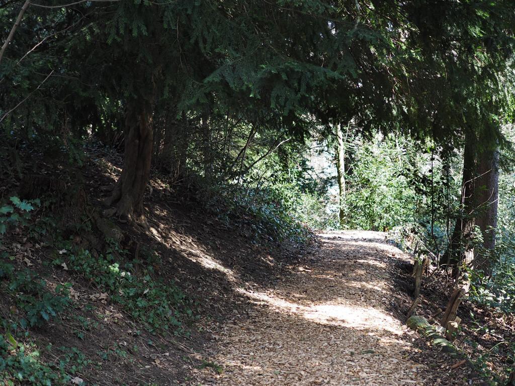 Promenade Gottettaz