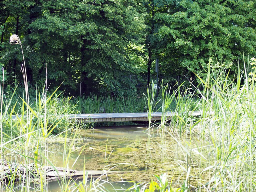 Maison de la rivière, morges