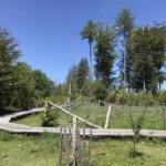 Sentier Handicap Nature Poussette, enbalades
